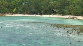 Playa arenosa tropical con las palmeras y las olas oceánicas del azul que ruedan encendido durante marea baja almacen de metraje de vídeo