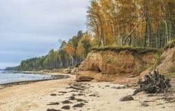 Playa báltica en el otoño cerca del pueblo de Tuja, Letonia Foto de archivo libre de regalías