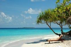 Playa blanca de la arena en Maldives Imagen de archivo libre de regalías