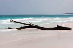 Playa blanca de Tulum en México Foto de archivo libre de regalías
