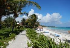 Playa blanca del Caribe de la arena y acera ajardinada en un centro turístico tropical Fotos de archivo libres de regalías