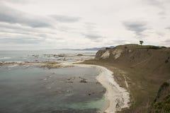 Playa blanca y mar azul en el invierno, Nueva Zelanda Imagenes de archivo