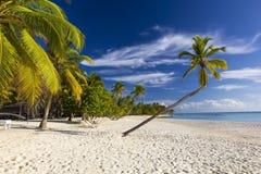 Playa Bonita in Isla Saona royalty-vrije stock foto