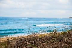 Playa borrosa imagen de archivo