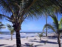 Playa brasileña el verano y día soleado Imagen de archivo