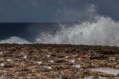 Playa Canoa waves and birds Stock Image