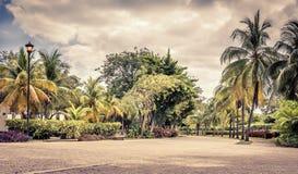 playa Carmen del Μεξικό Στοκ Εικόνες