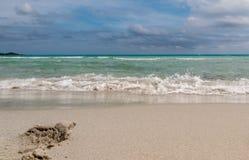 Playa casi perfecta Fotografía de archivo libre de regalías