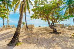 Playa Cayo Levantado Beach View Stock Photo