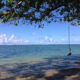 Playa con el oscilación fotografía de archivo