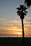 Playa con el sol poniente Foto de archivo libre de regalías