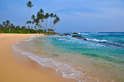 Playa con la arena y las palmeras blancas Imágenes de archivo libres de regalías