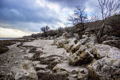 Playa con la piedra arenisca, arbustos en la puesta del sol imagen de archivo