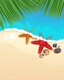 Playa con las estrellas de mar y las ramas de la palma Fotografía de archivo