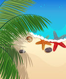 Playa con las estrellas de mar y las ramas de la palma Fotos de archivo libres de regalías