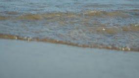 Playa con las ondas almacen de metraje de vídeo
