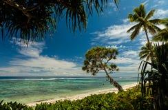 Playa con las palmeras en la isla de South Pacific de Tonga imagen de archivo