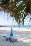 Playa con las palmeras y el paraguas doblado Imagen de archivo libre de regalías