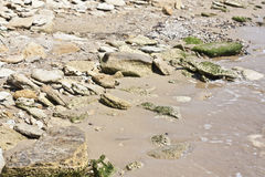 Playa con las piedras grandes fotos de archivo