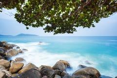 Playa con los cantos rodados y el árbol de hoja caduca Imágenes de archivo libres de regalías