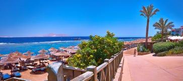 Playa con los paraguas, el follaje y las palmeras Fotos de archivo