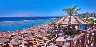Playa con los paraguas, el follaje y las palmeras Imágenes de archivo libres de regalías