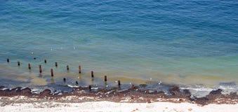 Playa con los pilotes y la alga marina Fotos de archivo libres de regalías