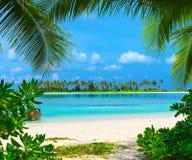 Playa con Maldivas Foto de archivo libre de regalías