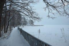 Playa congelada Imagen de archivo libre de regalías