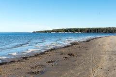 Playa congelada del mar Foto de archivo