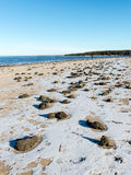 Playa congelada del mar Foto de archivo libre de regalías