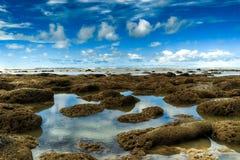 Playa coralina y cielo azul Imagen de archivo