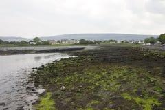 Playa cubierta de musgo en Irlanda Foto de archivo libre de regalías