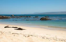Playa de Algarrobo Imágenes de archivo libres de regalías