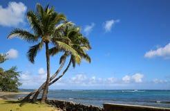 Playa de Aukai fotos de archivo libres de regalías