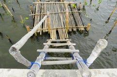Playa de bambú por el mar Fotos de archivo libres de regalías