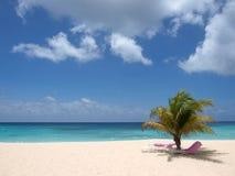 Playa de Barbados Fotos de archivo