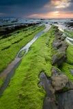 Playa de Barrika Fotos de archivo libres de regalías