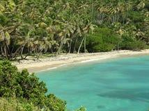Playa de Bequia Imagen de archivo libre de regalías