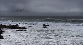 Playa de Carmel en un día tempestuoso imagen de archivo