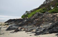 Playa de Carpinteria, alquitrán Pit Park, costa central Imagenes de archivo