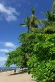 Playa de Corcovado Imagenes de archivo