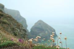 Playa de Cornualles Imagen de archivo libre de regalías
