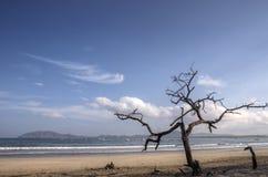 Playa de Costa Rica imágenes de archivo libres de regalías