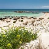 Playa de Elafonisi (Crete, Grecia) imágenes de archivo libres de regalías