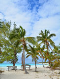 Playa de Eleuthera Bahamas imagen de archivo
