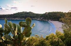 Playa de Fetovaia, Elba Island, Toscana, Italia imagen de archivo