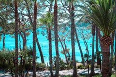 Playa de Formentor Cala Pi de Ла Posada, красивый пляж на крышке Formentor, Palma Мальорка, Испании стоковые фото