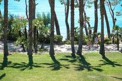 Playa De Formentor Cala Pi De Los angeles Posada, piękna plaża przy nakrętką Formentor, Palma Mallorca, Hiszpania obraz royalty free