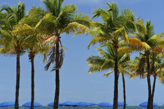 Playa de Fort Lauderdale Foto de archivo